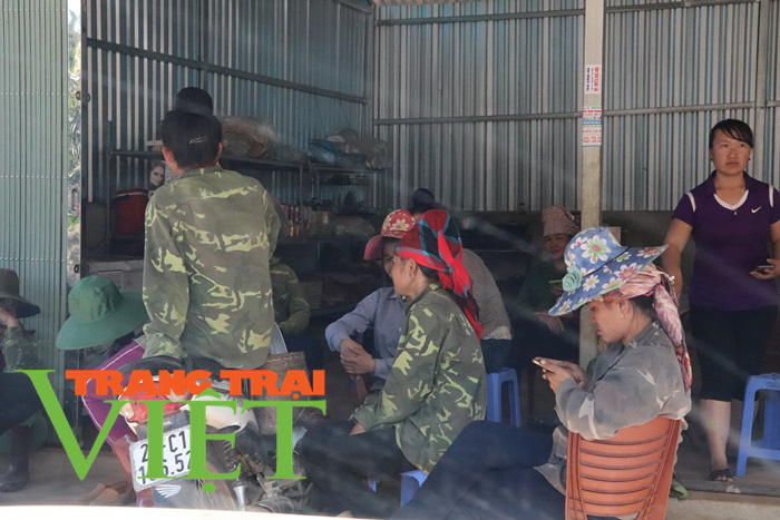 Công ty CP VLXD Sông Mã (Sơn La): Ngang nhiên xây dựng, sản xuất khi chưa đủ điều kiện - Ảnh 5.
