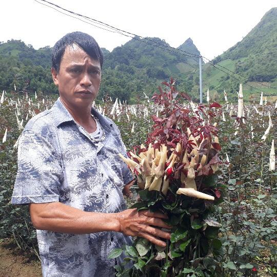 Bước tiến trong sản xuất nông nghiệp ở thành phố Lai Châu - Ảnh 1.