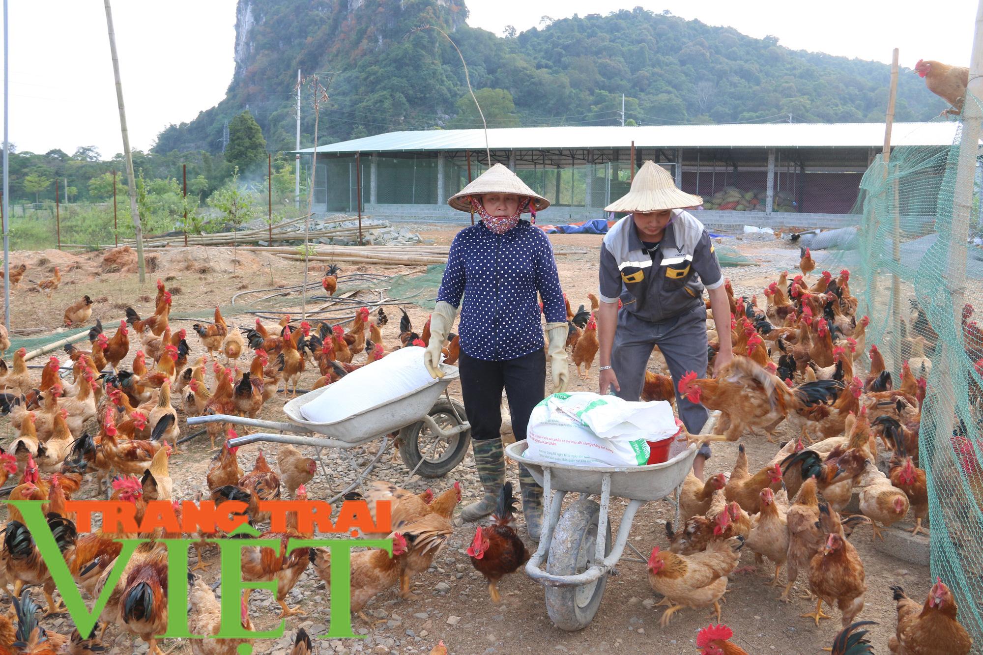 Hội Nông dân Sơn La giúp hội viên làm kinh tế - Ảnh 5.