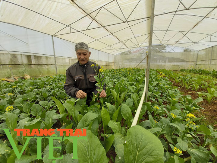 Hội Nông dân tỉnh Sơn La thi đua sản xuất kinh doanh giỏi - Ảnh 6.