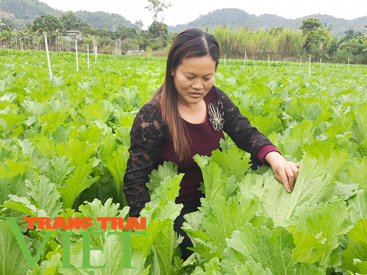 Hội Nông dân tỉnh Sơn La thi đua sản xuất kinh doanh giỏi - Ảnh 4.