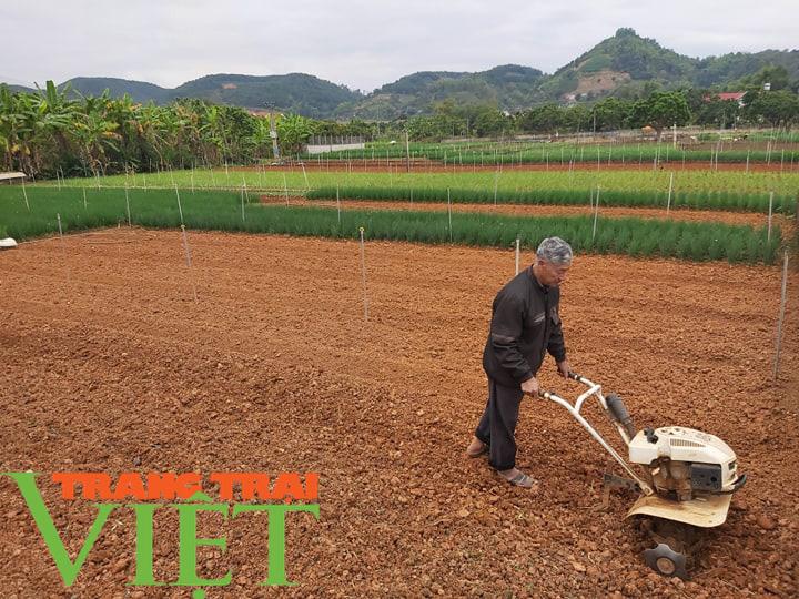 Hội Nông dân tỉnh Sơn La thi đua sản xuất kinh doanh giỏi - Ảnh 5.