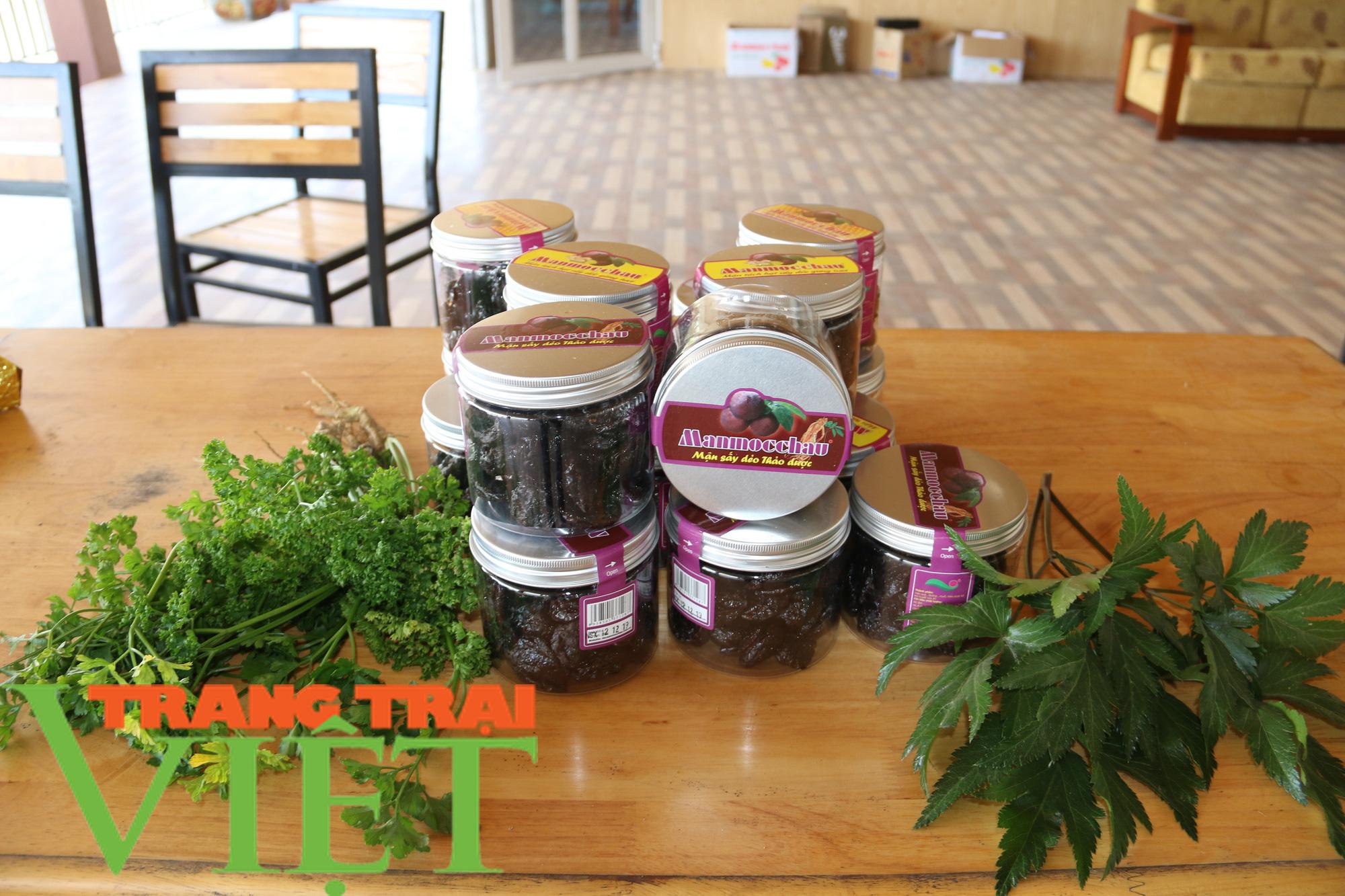 Mận sấy dẻo thảo dược, món quà vùng thảo nguyên xanh - Ảnh 3.