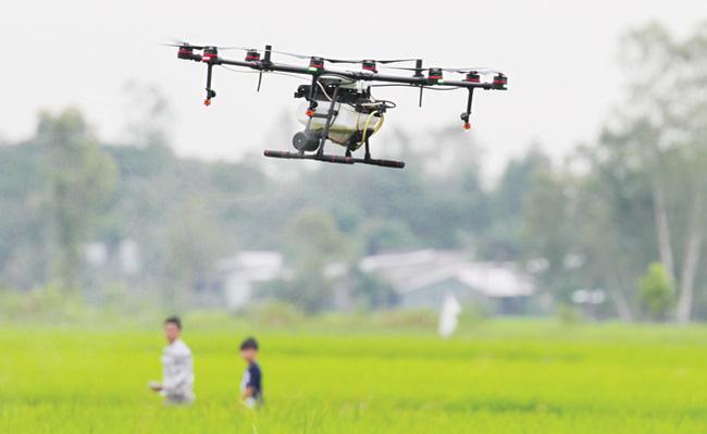Nông dân bảo vệ lúa bằng thiết bị bay - Ảnh 1.