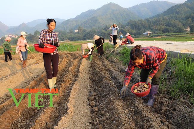 Nông thôn mới Dương Quỳ: Đích đến không còn xa - Ảnh 2.