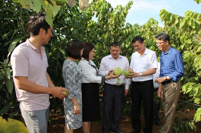 Sơn La: Thẩm định xã đạt chuẩn nông thôn mới Cò Nòi - Ảnh 3.