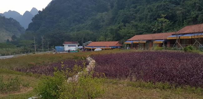 Vụ dự án được triển khai trước khi… mở thầu ở Cao Bằng: Có chỉ đạo từ lãnh đạo tỉnh? - Ảnh 1.