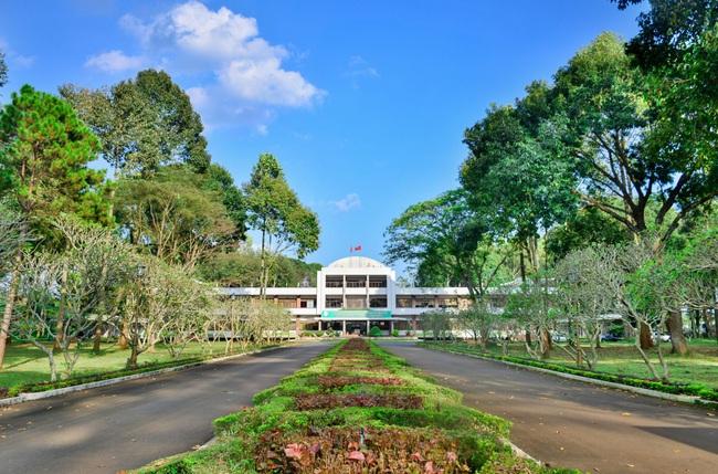 Đồng Nai thu hồi gần 1.800 ha của Cao su Đồng Nai để thực hiện tái định cư cho Sân bay Long Thành - Ảnh 1.