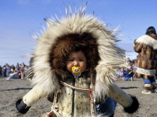 """4 """"phép màu"""" giúp người Eskimo sống khỏe ở -50 độ C"""