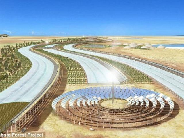 """Bắt sa mạc Sahara """"đẻ"""" ra rau xanh, nước sạch quanh năm"""