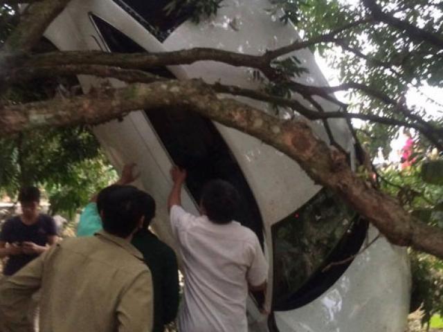 """Siêu xe Audi mất lái """"bay"""" lên ngọn cây"""