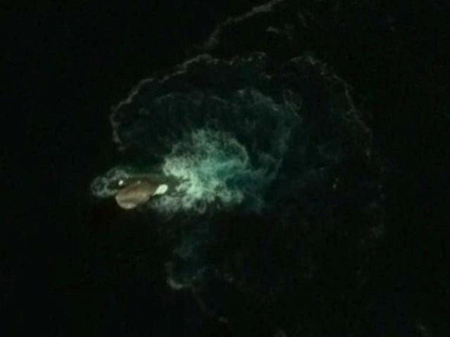 Google Earth tìm ra thủy quái dài 120m khét tiếng?