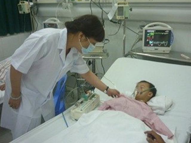 Hà Nội bùng phát bệnh viêm não Nhật Bản