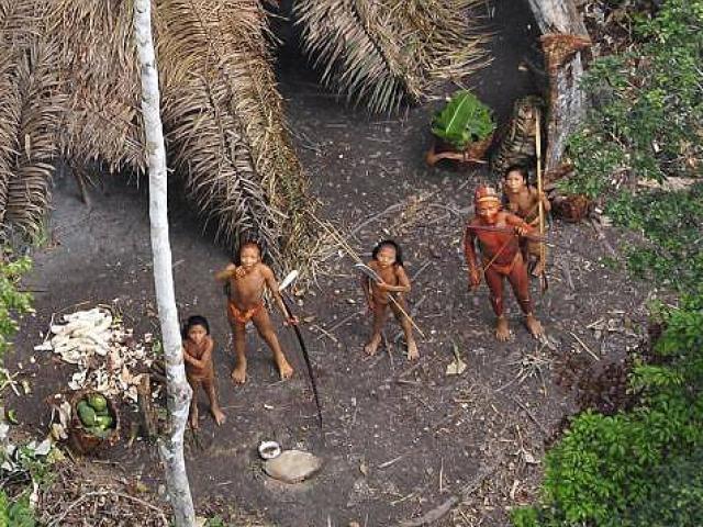 10 thổ dân nguyên thủy Amazon đi lạc bị giết hại dã man
