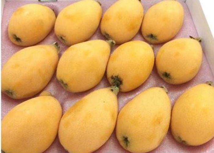 Hám trái cây lạ nên biwa bán ở bên Nhật chỉ có 400.000 đồng/kg, còn ở Việt Nam giá lên tới gần 4 triệu đồng/kg.