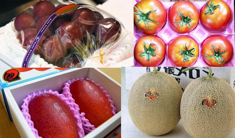 Các loại trái cây có giá đắt đỏ nhất thế giới được bày bán khá nhiều tại Việt Nam.