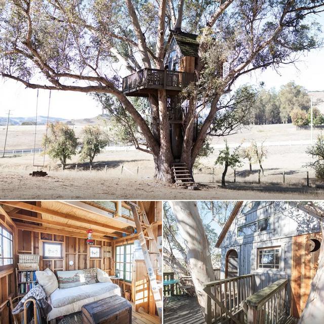 Ngôi nhà ở Petaluma, California.