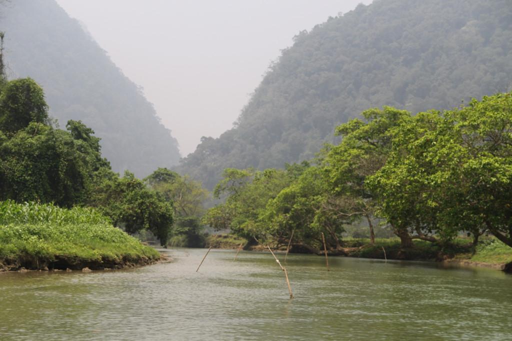 Trong hình là một đoạn sông Năng dẫn vào thác Đầu Đẳng. Hai bên là vạch núi dựng đứng. Mép sông là những hàng cây cổ thụ ngả bóng xuống mặt nước vô cùng tuyệt đẹp.