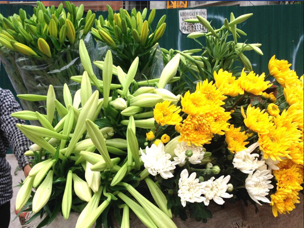 Vẻ dịu dàng của loa kèn luôn nổi bật trong mỗi gánh hoa.