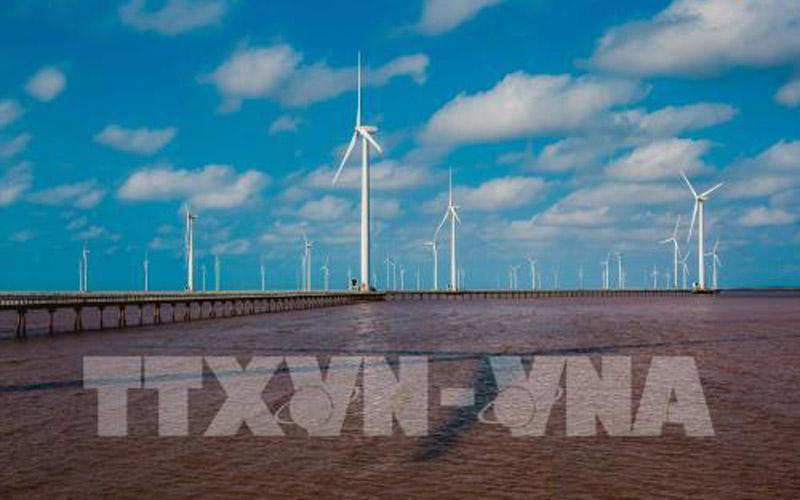 Nhà máy điện gió Bạc Liêu mới được hoàn thành với hàng trăm cánh quạt gió. Ảnh: Trọng Đạt - TTXVN