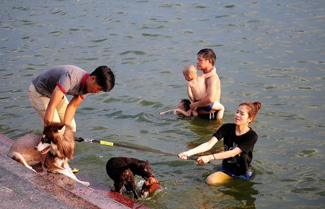 Chó cưng vui đùa trong làn nước mát với cô chủ