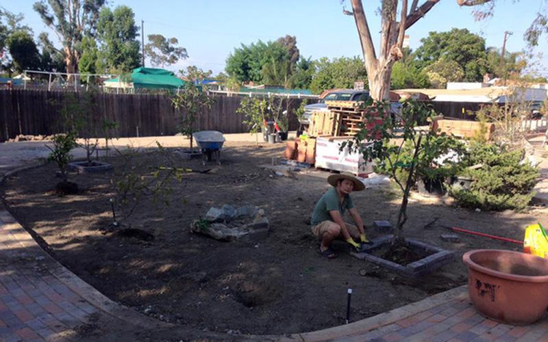 Bằng Kiều dành nhiều công sức để chăm sóc cho khu vườn nhà mình.