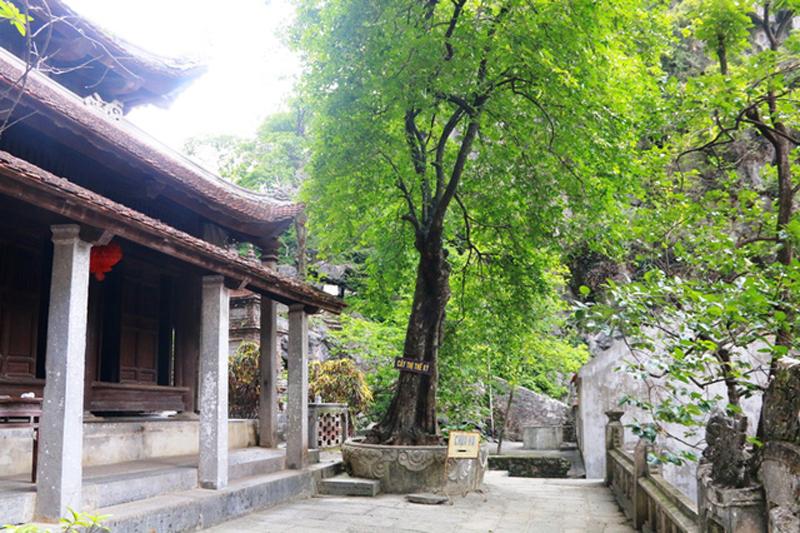 Các cột đá ở chùa Hạ đều bằng đá liền một khối, không chắp nối, cao hơn 4m. Mái chùa cong hình lưỡi đao lợp ngói âm dương. Xung quanh ngôi chùa này có nhiều cây cổ thụ tỏa bóng mát, trường tồn với thời gian