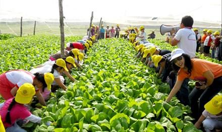 Mô hình du lịch sinh thái nông nghiệp tại EraHouse (Long Biên, Hà Nội).