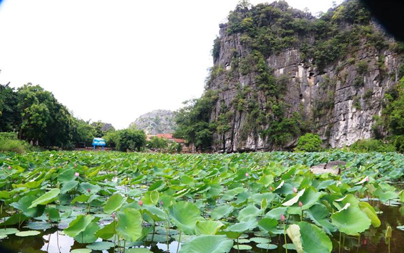 Bích động là một ngôi chùa độc nhất vô nhị ở Việt Nam, không nơi nào có thế đất, thế núi như vậy. Đứng trên chùa Thượng có thể phóng tầm mắt bao quát được toàn bộ cảnh đẹp quanh ngôi chùa như thế núi, hồ sen tạo cho du khách sự tĩnh lặng đến lạ thường.