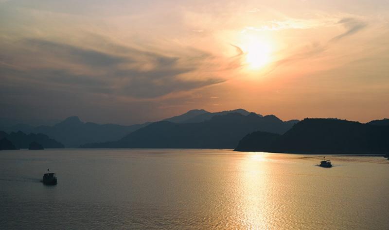 Theo những người địa phương, Đảo Xanh có diện tích lớn nhất so với các hòn đảo trong lòng hồ Hòa Bình. Anh Thủy, chúa đảo, là người có công gây dựng và phủ xanh hòn đảo từ hơn 10 năm nay. Anh là người đã tự tay trồng từ những cây săng lẻ đầu tiên.