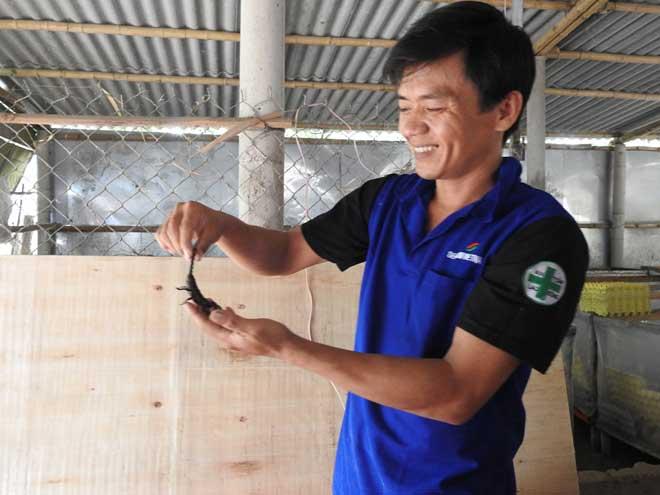 Trung khoe mô hình nuôi bọ cạp lấy thịt được thị trường ưa chuộng.