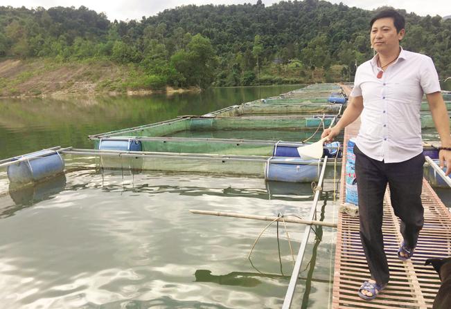 Với diện tích mặt hồ Hồng Kếnh rộng 22ha, anh Mừng đặt 40 lồng nổi nuôi trong đó các loại cá bình dân và đặc sản, doanh thu mỗi năm đạt trên 2 tỉ đồng.