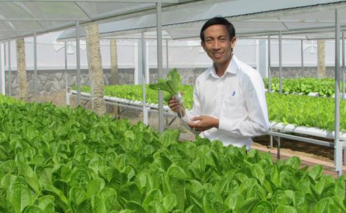 suc hut tu nong nghiep 4.0: trong hoa, bo tui 1.000 usd/thang hinh anh 1