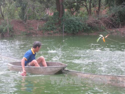 Chi phí thức ăn quyết định lợi nhuận trong nuôi trồng thủy sản. Trong ảnh: Nông dân Bình Phước làm giàu từ nuôi cá rô đồng. Ảnh: Đậu Tất Thành – TTXVN.