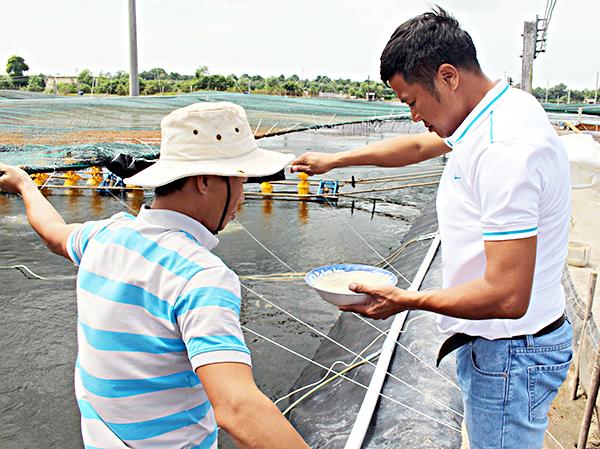 Cán bộ thủy sản lấy nước kiểm tra độ mặn tại ao nuôi của ông Ngô Văn Thức (ấp Ông Tô, xã Phước Thuận).