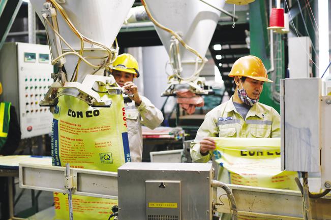 Công nhân đóng bao thức ăn chăn nuôi tại nhà máy thức ăn chăn nuôi tiêu chuẩn Global GAP tại tỉnh Nghệ An.