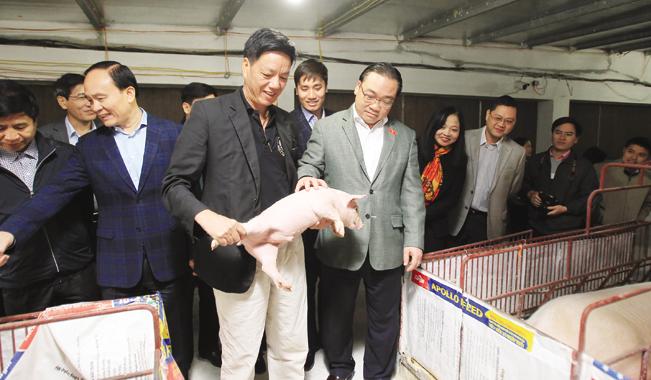 Ông Thanh chia sẻ kinh nghiệm nuôi lợn công nghệ cao với khách đến thăm trang trại.