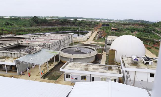 Hệ thống xử lý chất thải chăn nuôi tại các trang trại được Tập đoàn Masan đầu tư 200 tỷ đồng cho ra nước thải đạt tiêu chuẩn cột ''A''.