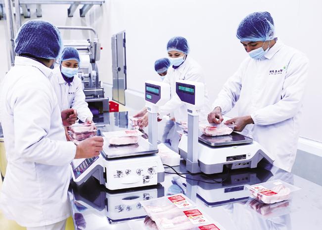 Đóng gói sản phẩm thịt lợn mát tại tại Tổ hợp chế biến thịt MNS Meat Hà Nam.