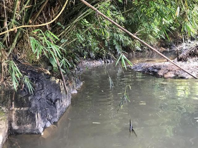 Người dân dùng nước nhiễm styren có thể kiện Cty nước sạch sông Đà - Ảnh 2.
