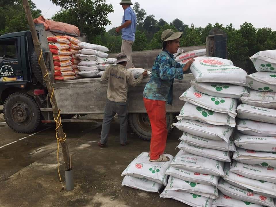 Hỗ trợ nông dân Hà Tĩnh mua hơn 3.500 tấn phân Lâm Thao chậm trả - Ảnh 3.