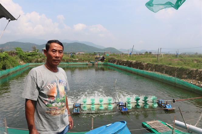 Trung Quốc ngừng mua, giá ốc hương giảm sâu suốt 6 tháng - Ảnh 2.