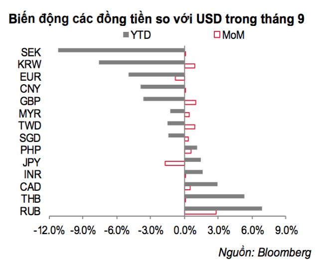 VND - Đồng tiền hiếm hoi giữ giá ổn định suốt từ đầu năm đến nay - Ảnh 1.