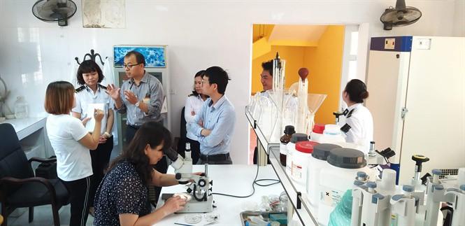 Chuyên gia Trung Quốc đánh giá cao thạch đen Việt Nam - Ảnh 1.