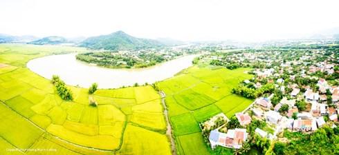 Đất ở nông thôn hiện nay cơ bản được miễn thuế sử dụng đất phi nông nghiệp - Ảnh 1.