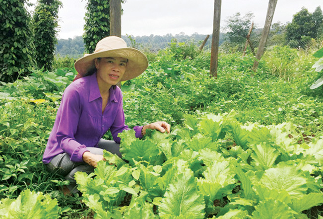 Chị Vi Thị Thanh, người được bầu chọn là Nông dân Việt Nam xuất sắc năm 2019.