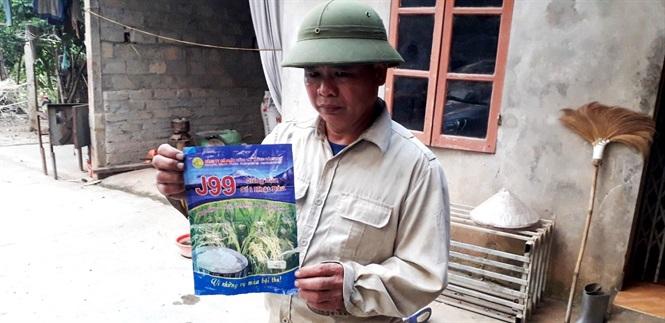 Ông Lương Tiến Hạng, xã Thượng Ấm cho biết: Cấy giống lúa J99 khiến vụ mùa này gia đình ông thất thu.