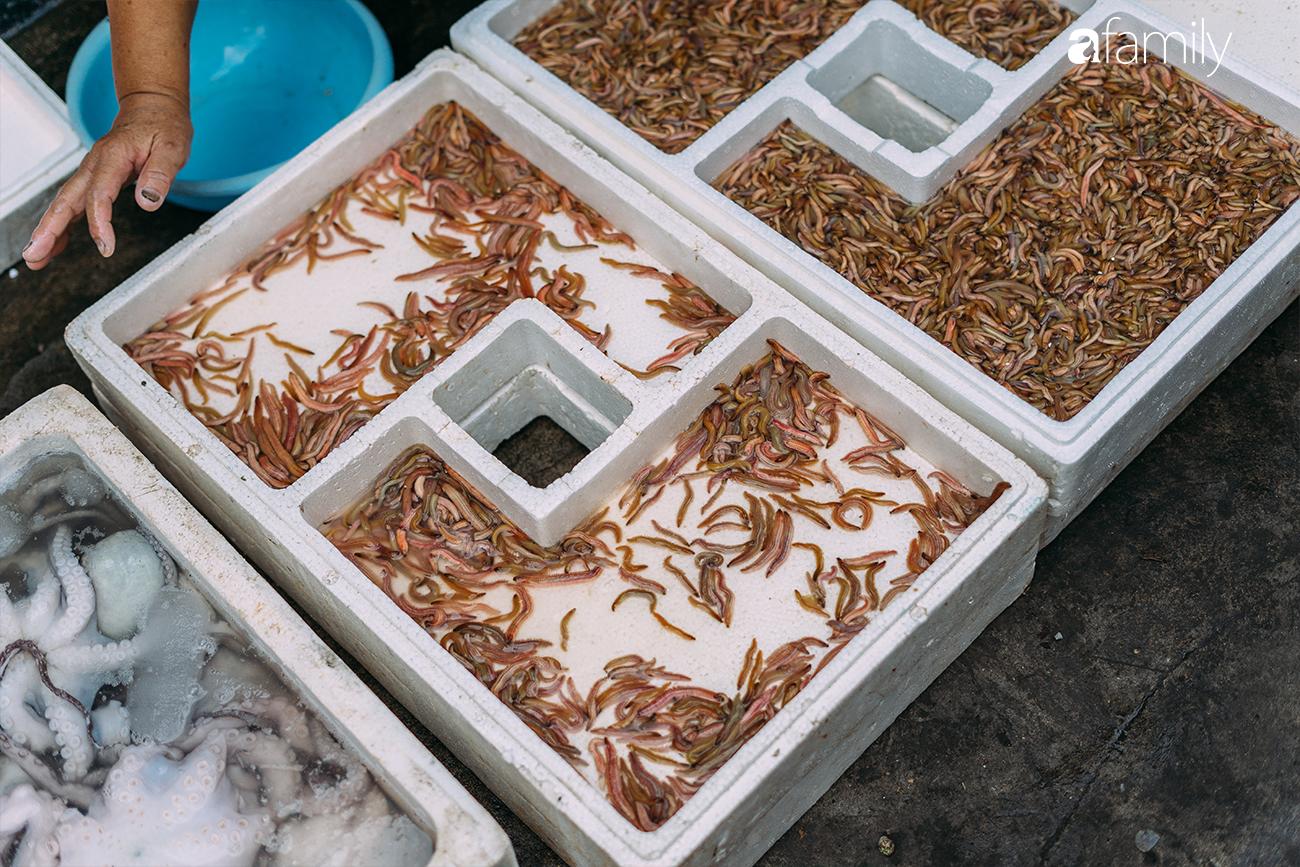 Rươi - báu vật ruộng đồng và văn hóa đi ăn rươi đi mỗi khi lạnh trời của người Hà Nội - Ảnh 2.