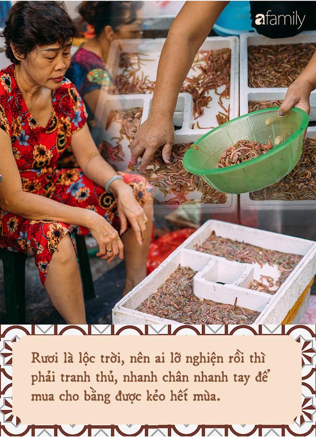 Rươi - báu vật ruộng đồng và văn hóa đi ăn rươi đi mỗi khi lạnh trời của người Hà Nội - Ảnh 4.