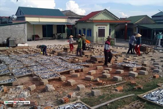 Lao đao làng nghề hấp cá xuất khẩu - Ảnh 10.
